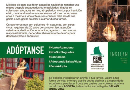 O Concello de Fene e a asociación INDICAN emprenden a campaña de concienciación «As vidas non se compran» sobre a tenza responsable de cans e a prevención do seu abandono
