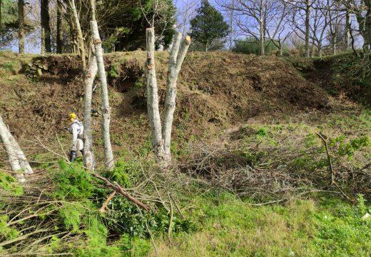 O Concello contrata un servizo de arqueoloxía para constatar que a senda entre Area da Vila e Lingunde non afecta ao castro